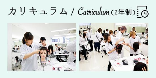 カリキュラム美容科2年コース